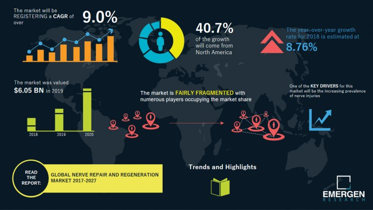 Nerve Repair And Regeneration Market 2021 | Industry Scenario and Key Vendors